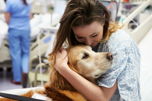 pet-therapy-beneficial-mental-health-patients