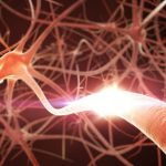 Could memory alteration be in our future? Study with mice suggests the possibility.
