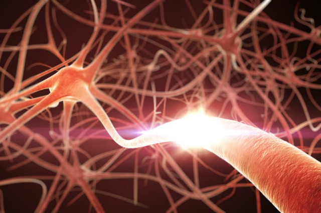 Researchers create serotonin-producing neurons that could aid depression treatment