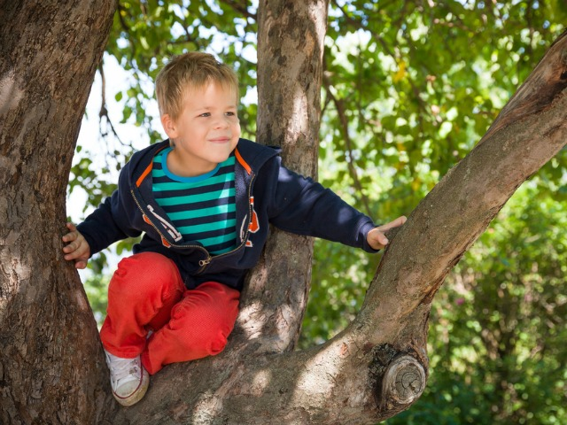 The childhood pastimes that flex working memory