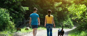 Nature walks: An easy way to improve your mental and physical health