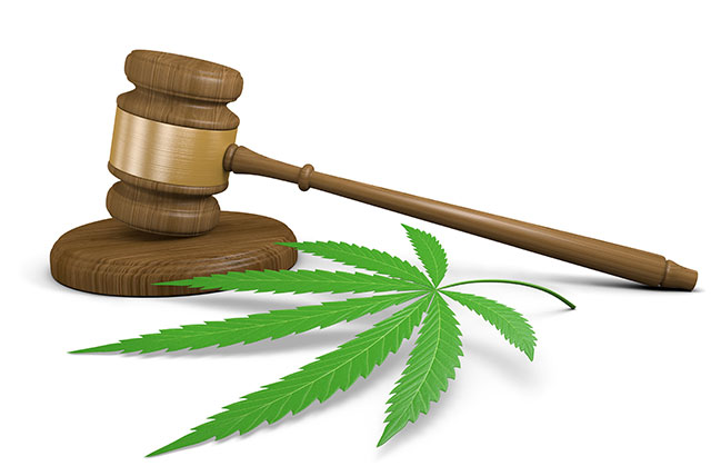 Marijuana legalization becomes a bone of contention between states and Feds